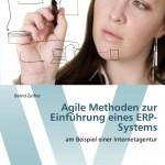 Agile Methoden zur Einführung eines ERP-Systems: am Beispiel einer Internetagentur [Taschenbuch]